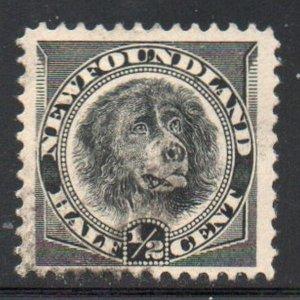 Newfoundland Sc 58 1894 1/2c black dog stamp used