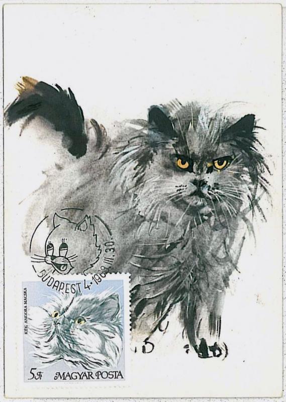 32501  MAXIMUM CARD - Animals CATS CAT : Hungary 1968 # 5