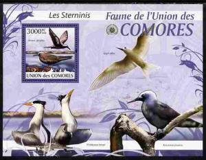 Comoro Islands MNH S/S Sea Birds 2009