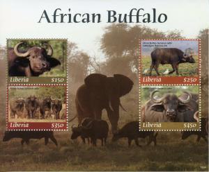 Liberia 2019 MNH African Buffalo 4v M/S Birds Elephants Wild Animals Stamps