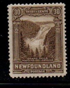 Newfoundland  Sc 159 1928 30 c Grand Falls stamp mint