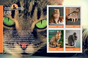 Uganda 2014 History of Domestic Animals Cats 4 Stamp Sheet 21D-145