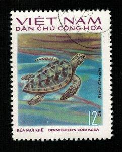 Turtle Vietnam  12Xu (TS-241)