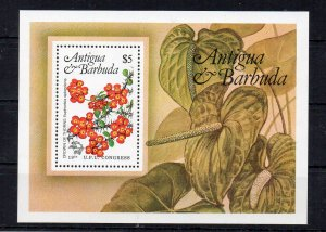 ANTIGUA AND BARBUDA - M/S - FLOWERS - 1984 -