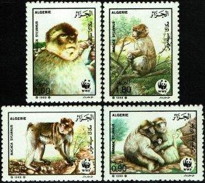 Algeria #872-75  MNH - WWF Barbary Apes (1988)