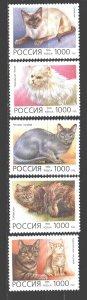 Russia. 1996. 266-70. Cats. MNH.