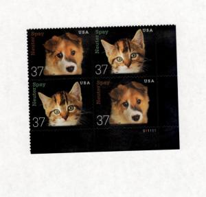 3670-1 Neuter Or Spay (Kitten &Puppy) Bottom Plate Block Mint/nh FREE SHIPPING