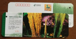 Jiutiandong karst cave,China 2011 zhangjiajie 4A level scenic spot ticket PSC