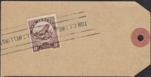 NEW ZEALAND 1935-40 8d Tuatara used on parcel tag Wellington to Auckland....1120