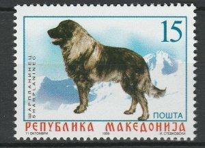 Macedonia 1999 Animals, Pets, Dogs MNH stamp