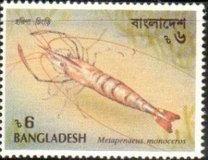 Brown Shrimp (Metapenaeus monoceros), Bangladesh SC#406 MNH