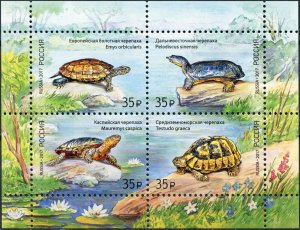 Russia 2017. Fauna of Russia - Turtles (MNH OG) Miniature Sheet