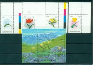 Flowers Flora Plants Blumen Uzbekistan MNH stamp set