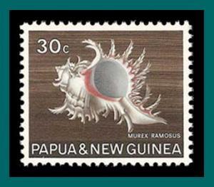 Papua New Guinea 1968 Ramose Murex, MNH 275,SG147