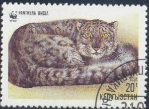 Snow Leopard, Panthera Uncia, Kyrgyzstan SC#30 used