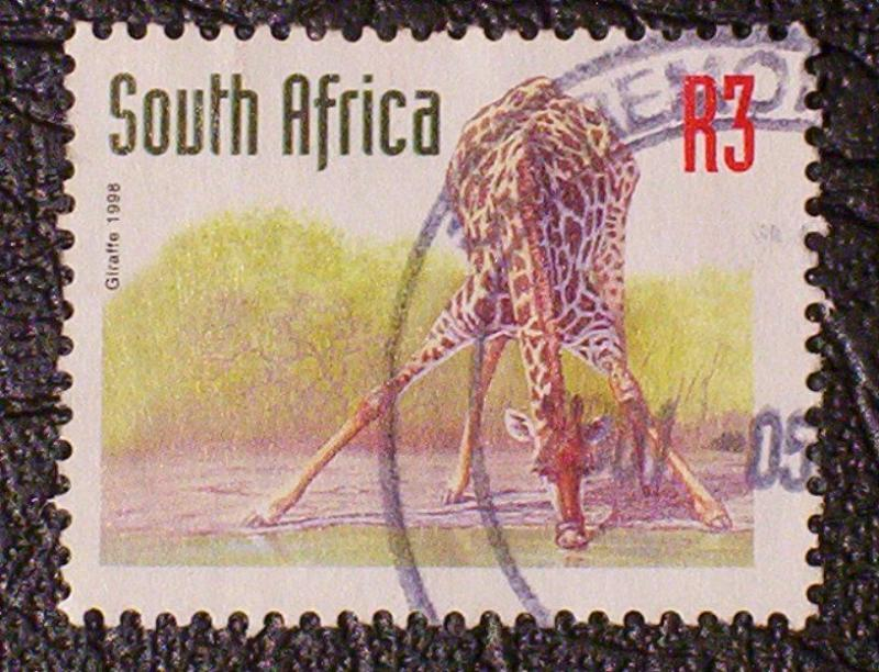 South Africa Scott #1044 used