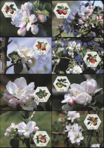Liechtenstein. 2015. Old Fruit Varieties. Apples (Mint) Set of 8 Maxi Cards
