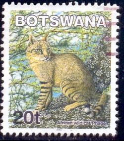African Wild Cat, Botswana stamp SC#743 Used