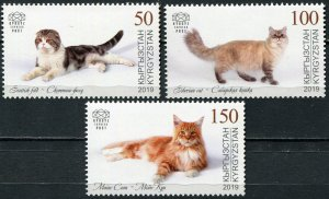Kyrgyzstan 2019. Domestic Cats (MNH OG) Set of 3 stamps