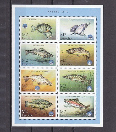 Lesotho, Scott cat. 1143. Fishes on a sheet of 8. ^