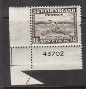 Newfoundland #260 VF Mint Rare Foldover Error