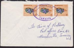 JAMAICA 1967 local cover STRAWBERRY temporary rubber datestamp..............5123