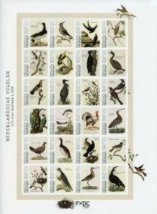 Saba Caribbean Netherlands Stamps 2021 MNH Dutch Birds Nozeman & Sepp 24v M/S