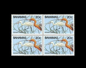 BAHAMAS - 1981 - BIRD - REDDISH EGRET - WATERFOWL - MINT - MNH BLOCK!