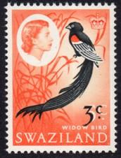 Swaziland - 1968 3c on 5c MNH** SG 136