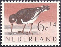 Netherlands # B354 mnh ~ 6¢ + 4¢ Bird - Oystercatcher