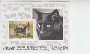 1993 Venda National Philatelic Exhibition - Cats  SS (Scott 256z) MNH