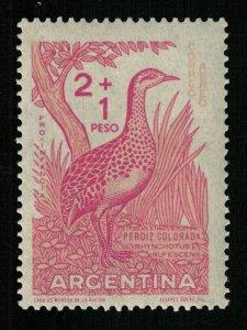 Republica Argentina (ТS-1379)