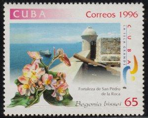 1996 Cuba  Stamps Sc 3762 Flower Begonia bissei Fort San Pedro de La Roca MNH