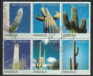 Angola Cacti Used No Catalogue