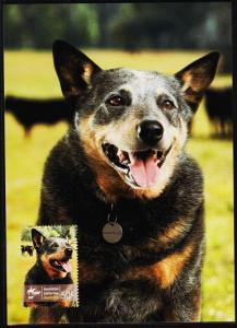 Australia. 2008 50c Maxim Card. Fine Used