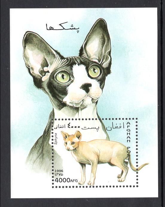Afghanistan MNH S/S Sphynx Cat