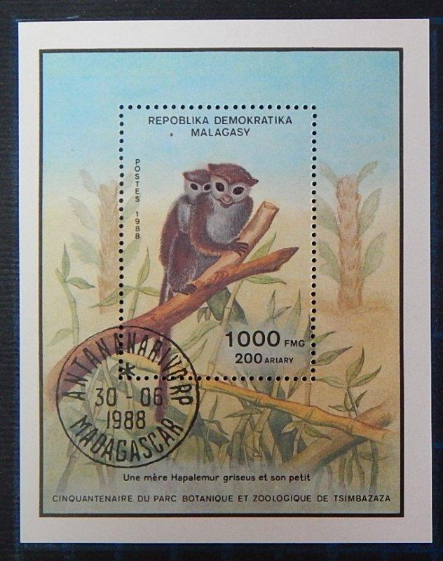 Animals, Madagascar, (2639-Т)