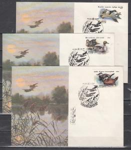 Russia, Scott cat. 6009-6011. Ducks issue on 3 First day covers.