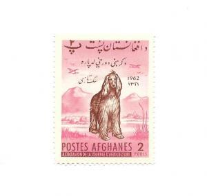 Afghanistan 1962 - M - Scott #565 *