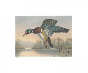 WASHINGTON #6 1991 STATE DUCK STAMP PRINT WOOD DUCK BY rONALD lOUQUE