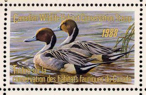 CANADA 1988 DUCK STAMP MINT IN FOLDER AS ISSUED PINTAILS by Robert Bateman