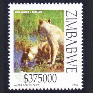 Zimbabwe Lionesses drinking Water conservation issue SG#1190
