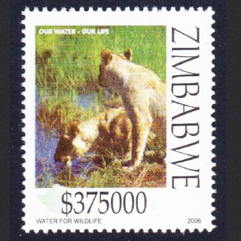 Zimbabwe Lionesses drinking Water conservation SG#1190
