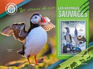 Z08 IMPERF CA190511b CENTRAL AFRICA 2019 Sea birds MNH ** Postfrisch