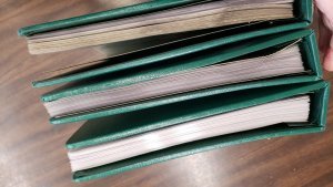 (B2) 3 White Ace Guardian Mint Sheet Books, Green, gently used