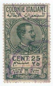 (I.B) Italy (Libya) Revenue : Duty Stamp 25c (1914)
