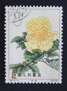 China, Rose, 1964, ((6)11-2(IR))