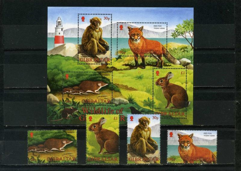 GIBRALTAR 2002 Sc#909-912a FAUNA WILD ANIMALS SET OF 4 STAMPS & S/S MNH