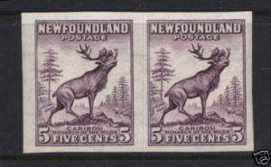 Newfoundland #191b XF/NH Imperf Pair With Watermark