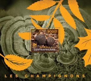 CENTRAFRICAINE 2014 SHEET MUSHROOMS